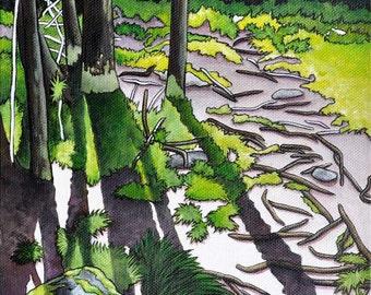 Woodland Art Print, Forest Wall Art,  Nature Art Print, Cedar Trees Print, 8x10 Art Print, Parks and Recreation, Ontario Parks Art, Wall Art