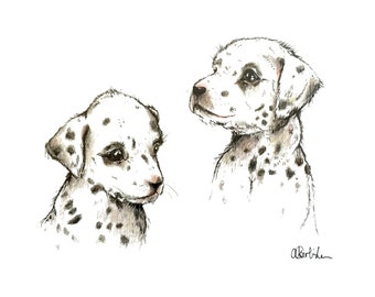 Dalmatian Puppy illustration