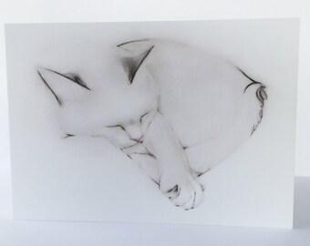 Sleeping Cat Greeting Card, blank
