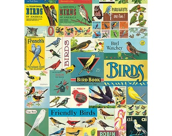 Vintage Birds Wrapping Paper by Cavallini to Frame or Wrapping, Book Binding, Decoupage, Collage, Scrapbooking & Paper Arts PSS 3268