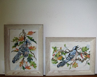 PAINT BY NUMBER, 2 Framed paint by number of Jay Birds, 1950's framed paintings, vintage paint by number