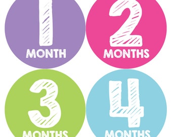 Baby Girl Month Stickers Monthly Baby Sticker Monthly Baby Stickers Baby Month Stickers Milestone Stickers Photo Stickers 033