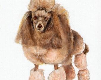 Original Oil Art WHITE POODLE Portrait Painting Dog Artist Signed Artwork Puppy