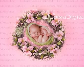 Digital background digital backdrop newborn   #20