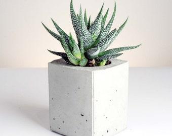 Rectangular Prism Planter - Handmade Geometric Concrete Planters