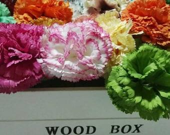 Fabric Carnation