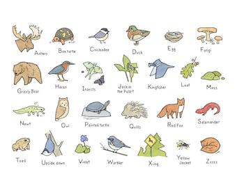 Woodland Art Alphabet, Woodland baby shower, Forest Animals Wall Art, Nursery Art Print
