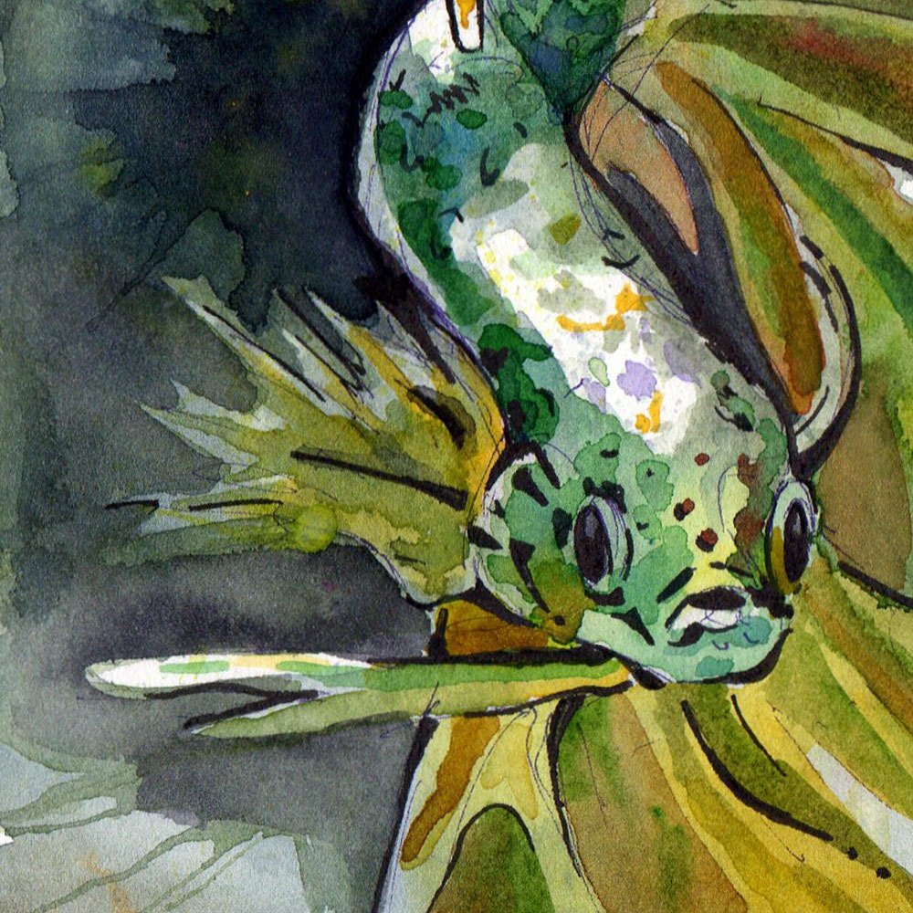 Art Print of Green Betta Fish - Print of Original Watercolor on ...
