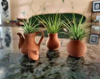FREE SHIPPING *3 Mini Pots With Air Plants / Fairy Garden Planters *