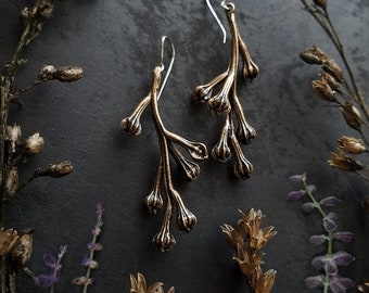 Seed Pods of the Primrose made out of Bronze, Native Wildflower Specimen cast into solid Bronze