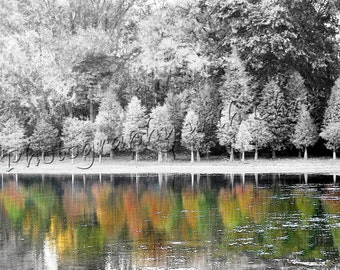Reflecting Color