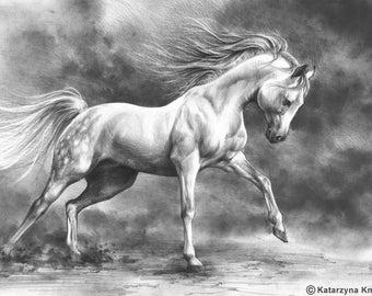 running horse original drawing - white horse pencil drawing - equine pencil art - original pencil art - animal drawing - black and white art