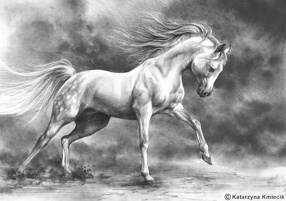running horse original drawing white horse pencil drawing - photo#16