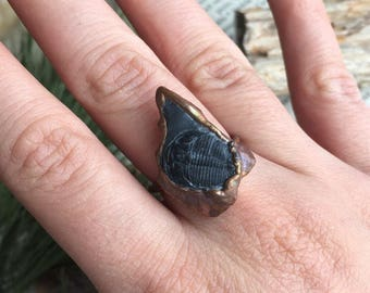 Trilobite Fossil Ring- Size 8.5