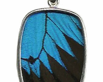 Large Blue and Black Papilio Ulysses Swallowtail Butterfly Oblong Silver Pendant