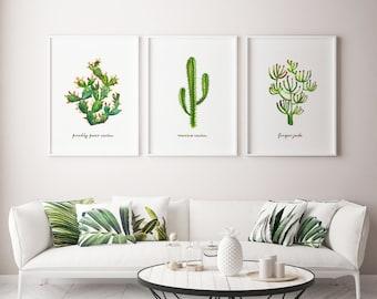 Cactus Print Cactus Wall Art Succulent Watercolor Art Set of 3 Paintings Southwest Art Prickly Pear Cactus Botanical Living Room Wall Decor