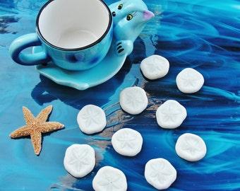 Little Sea Cookies ~ Look like sand dollars ~ set of 8 (8 pieces) ~ Beach Decor ~ Wedding Decor ~ Sea Shells ~ Small