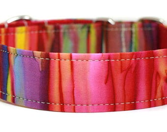 Rainbow Batik Dog Collar / Martingale Dog Collar / Custom Dog Collar