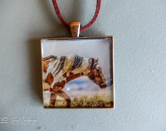 Picasso, a wild mustang stallion in Sandwash Basin Pendant