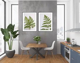 Fern Print, Fern Wall Art, Fern Art, Fern Photograph, Botanical Print