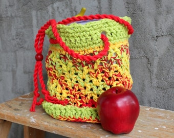 Eco Friendly  Lunch Sack / Book Tote