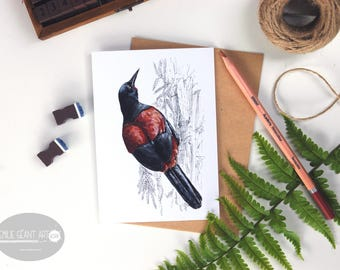 Saddleback - Tieke folded card from the New Zealand native birds series by Emilie Geant, from original watercolor painting
