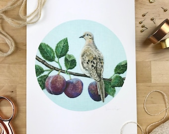 Mourning Dove & Plums - 8 x 10 Giclee Print - Orchard Birds 002