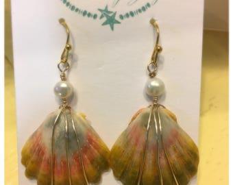 Sunrise Shell Earrings