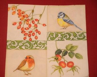 "Animals ""Birds"" themed paper napkin"