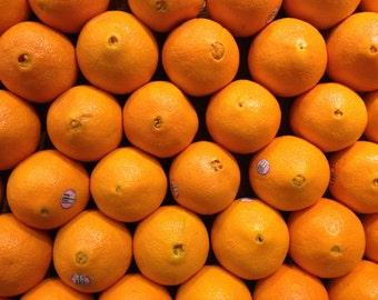 Orange Art Print, Kitchen Decor, Bar Decor, Fruit Print, Citrus Print, Modern Home Decor, Orange Print