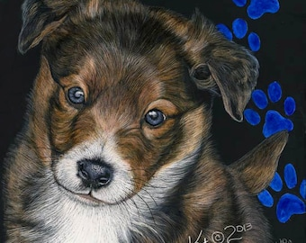 English Shepherd Puppy scratchart print -Nash
