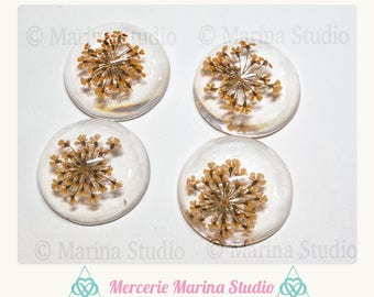 Orange cabochon resin 25mm colors dried flowers
