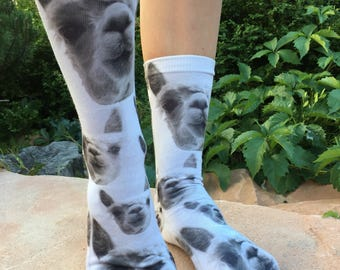Cute White Alpaca Socks | Alpaca Lover Gift | Cool Birthday Gifts | School Socks |Stocking Stuffers | Animal Gift |Kids Socks| Llama Socks