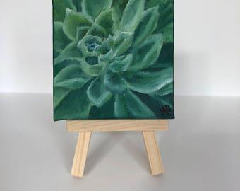 3 x 3 Irish Mint Succulent Oil Painting