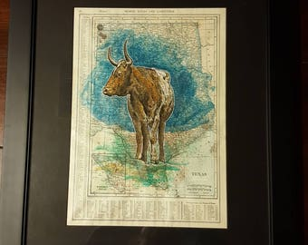 Texas longhorn map