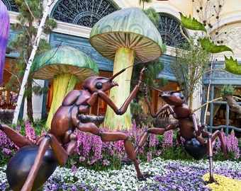 Ant Fight, photo art, Bellagio, Las Vegas, nature humor,  gift for gardener, wall art, home decor, office art, colorful art, garden photo