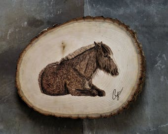 Wood-Burning: Resting Chestnut Horse