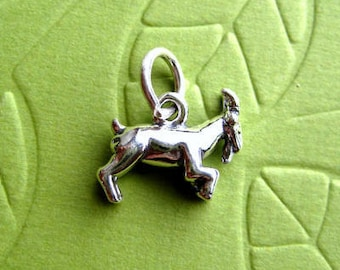 Sterling Silver   Zodiac  Capricorn  Sign Charm