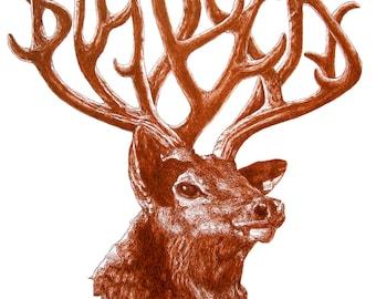 Big Bucks - original deer illustration pen and ink sienna drawing