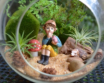 "Little Elf Terrarium Kit ~ 7"" Air Plant Terrarium Kit ~ 4 Pixie Characters to choose from ~ Each holding Animal ~ Sand choice ~ Gift"