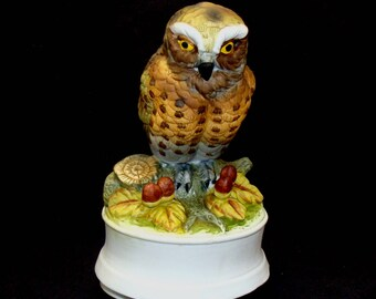 Vintage owl music box-beautiful bisque figurine