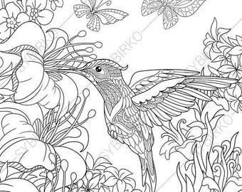 Hummingbird. 3 Coloring Pages. Animal Coloring Book Pages For Adults.  Instant Download Print