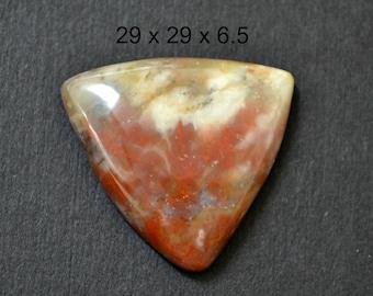 Coprolite cabochon  trillion cabochon 29 x 29 x 6.5