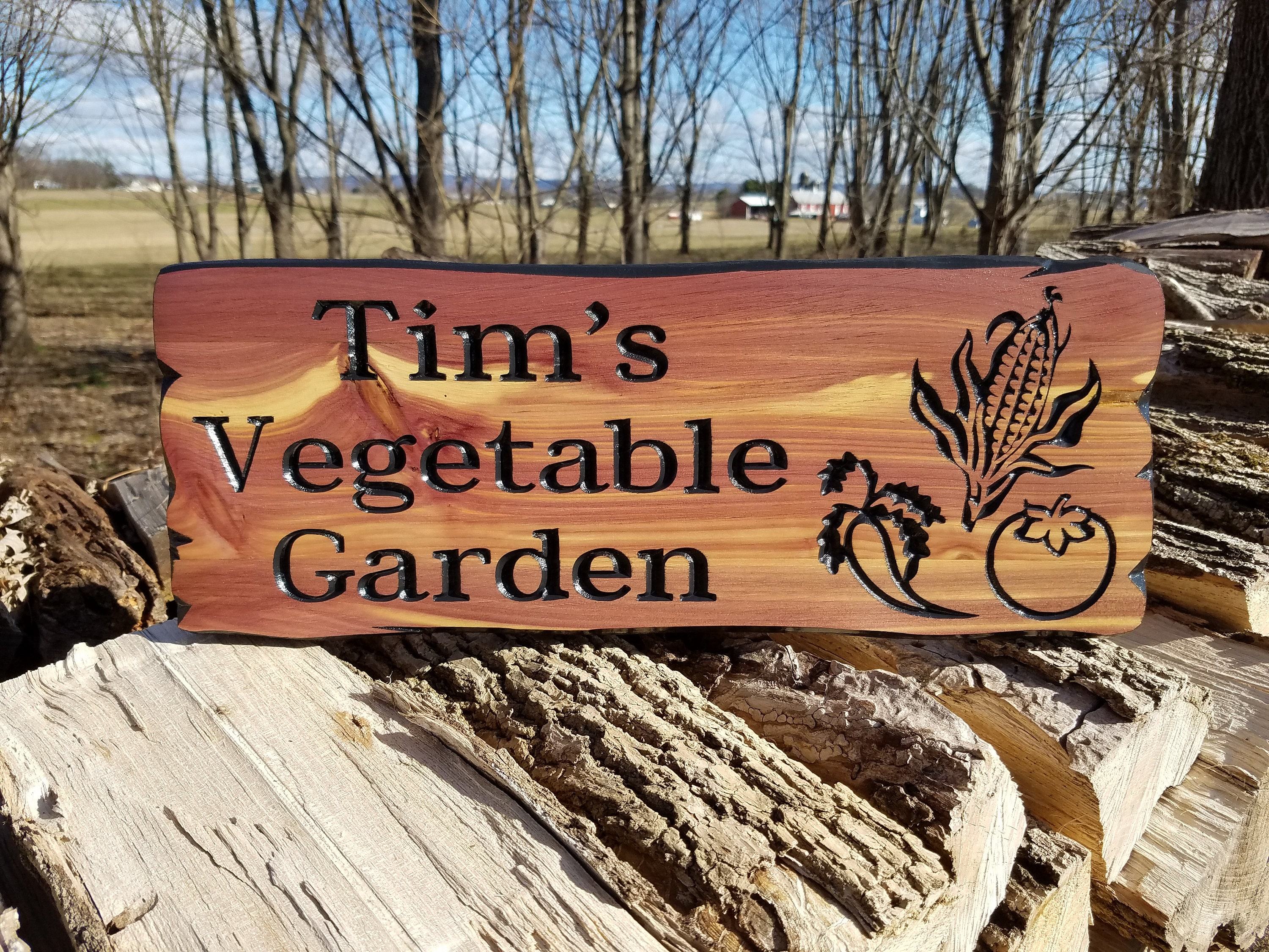 Brand-new Custom Outdoor House Sign Vegetable Images Personalized Garden  QH12