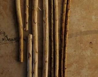 Yucca material