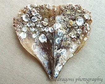 Rustic Heart Art, Seashell Art, Boho Decor, Shabby Chic Home Decor, Heart Print, Sea Shell Art, Beach Wall Art, Shell Print, Valentine Decor