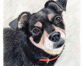 "RESERVED Custom Dog Pet Portrait 8"" x 10"" colored pencil"