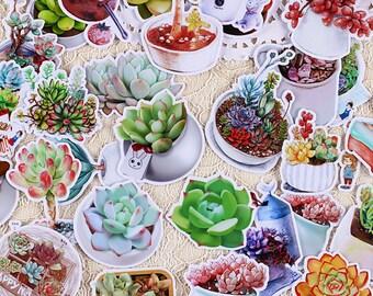 26 Pcs Succulents Sticker, Succulent Sticker Flakes, Plants Filofax Stickers, Gardening stickers, Cactus Sticker, Greenery Stickers, Plant