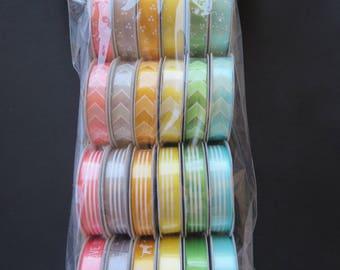 American Crafts Premium Ribbon -Amy Tangerine - 58869