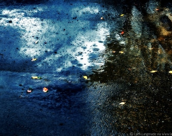 """Nature Photography - blue puddle with brown leaves, leaf wall art, leaf wall decor, nature prints,winter, rain, photographs -  """"Splinters"""""""